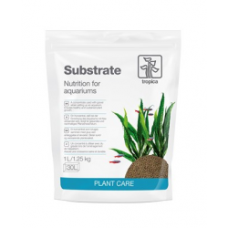 Substrate 1 L